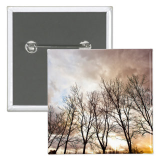 Forest Trees in Autumn with Cloudy Sky Pinback Button