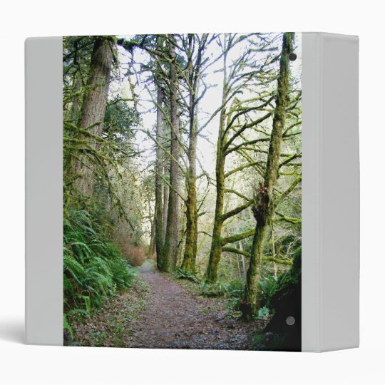 Forest Trees Redwoods Hiking Trail Scenic Oregon Binder