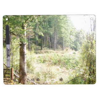 Forest Trees Redwoods Hiking Trail Scenic Oregon Dry Erase Board With Keychain Holder