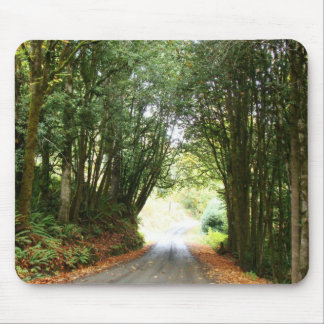 Forest Trees Woods Hiking Hiker Scenic Trails Mouse Pad