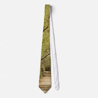 Forest Trees Woods Hiking Hiker Scenic Trails Tie