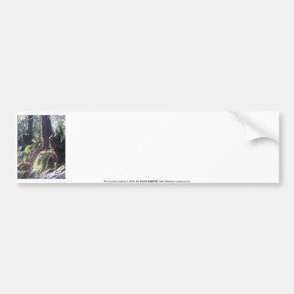 forest troll in the snow 2 bumper sticker