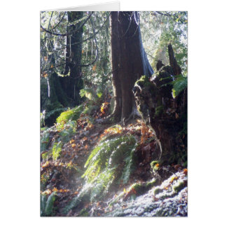 """forest """"troll"""" in the snow #2 greeting card"""