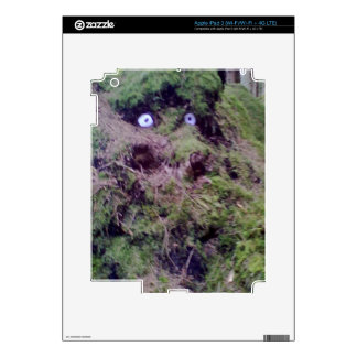 Forest Troll iPad 3 Decals