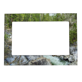Forest Vein Magnetic Picture Frame