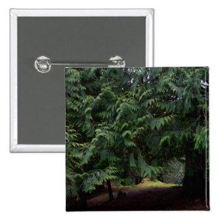 Forest Walk Button
