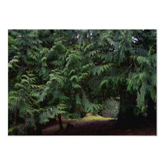 Forest Walk Card