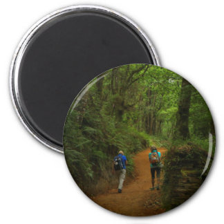 Forest walkers, El Camino, Spain Magnet