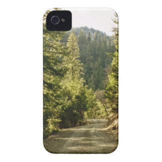 Forest Walking Path Blackberry Case