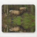 FOREST WILDLIFE Deer, Elk, Ravens Mousepad