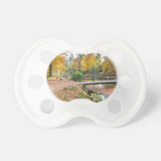 Forest with pond and bridge in fall colours pacifier