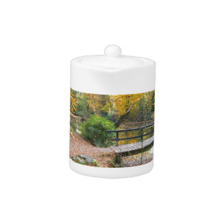 Forest with pond and bridge in fall colours teapot