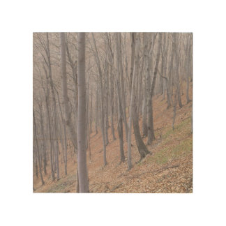 Forest Wood Wall Decor