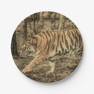 Forest Woodland wildlife Majestic Wild Tiger Paper Plate