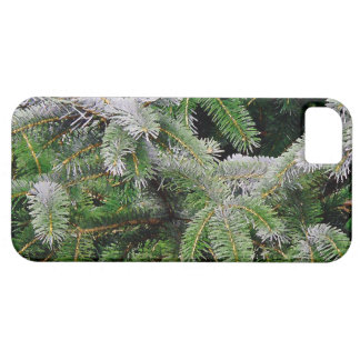 Forest Woods Leaves Trees Hiking Scenic Oregon iPhone SE/5/5s Case