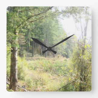 Forest Woods Leaves Trees Hiking Scenic Oregon Square Wall Clock