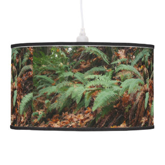 Forest Woods Meadow Ferns Oregon Trail Photography Ceiling Lamp