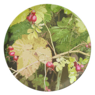 Forest Woods Meadow Ferns Oregon Trail Photography Dinner Plate