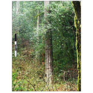 Forest Woods Meadow Ferns Oregon Trail Photography Dry-Erase Board