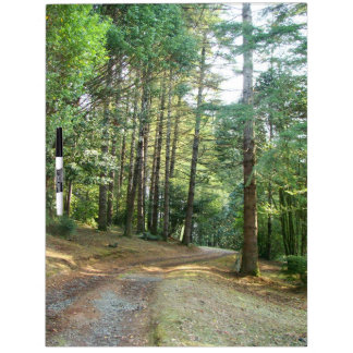 Forest Woods Meadow Ferns Oregon Trail Photography Dry Erase Board