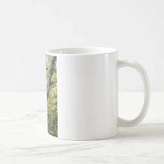 Forest Woods Mugs