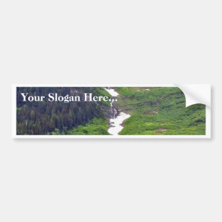 Forests Hillsides Fog Clouds Pines Trees Pinetrees Bumper Stickers