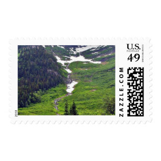 Forests Hillsides Fog Clouds Pines Trees Pinetrees Postage Stamp