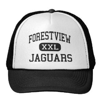 Forestview - Jaguars - High - Gastonia Hats