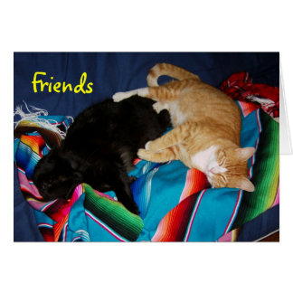 Forever Friends Greeting Cards