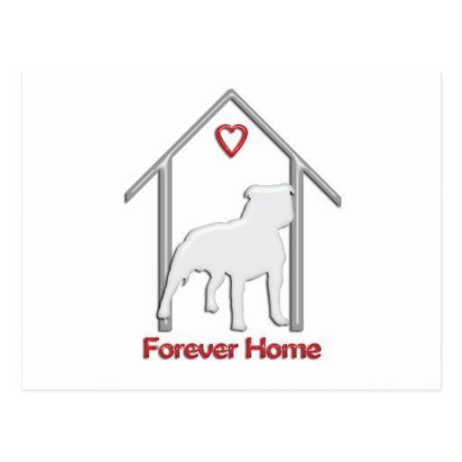 Forever Home White Pitbull Logo Postcard