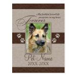 Forever Loved Pet Sympathy Postcard