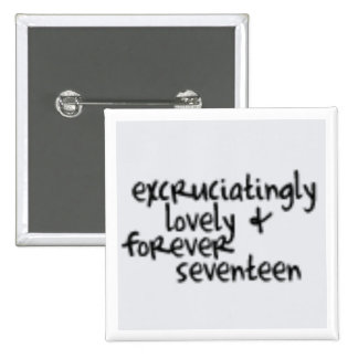 Forever seventeen pin