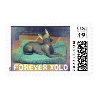FOREVER XOLO POSTAGE