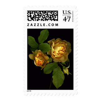 Forever Yellow Roses Postage