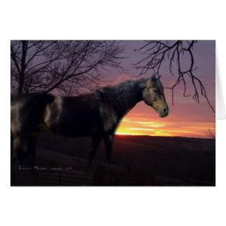 ForeverMorgans Black Horse in Purple Sunrise Card
