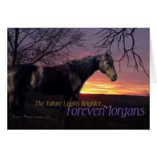 ForeverMorgans Bright Future Morgan Horse Card