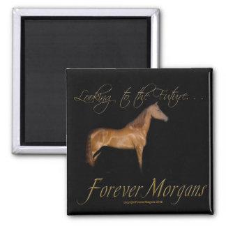 ForeverMorgans Rescue Horse Kramer 2 Inch Square Magnet