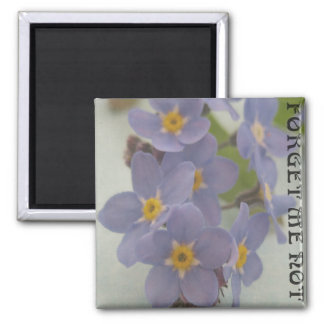 Forget me not 2 inch square magnet