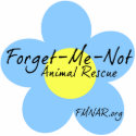 Forget-Me-Not 3D magnet Photo Cutout