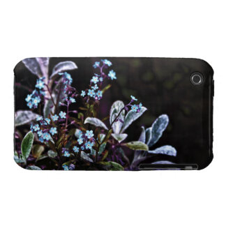 Forget Me Not blue flower iPhone 3 Covers