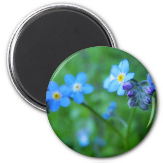 Forget-me-not Blues 2 Inch Round Magnet