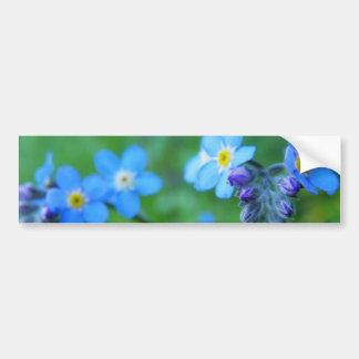 Forget-me-not Blues Bumper Sticker