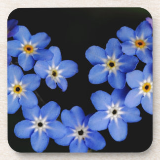 Forget me not beverage coasters