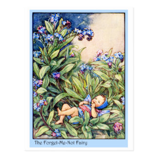 Forget-Me-Not Fairy Postcard