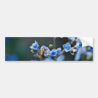 Forget me not flower, bee and meaning bumper sticker