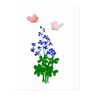 Forget-me-not flowers blue, shamrock, butterfly postcard