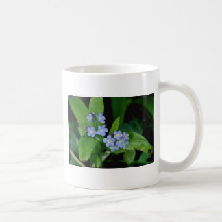 Forget-me-not flowers mugs