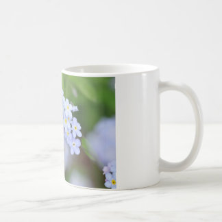 Forget Me Not Flowers Coffee Mugs
