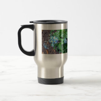 Forget-me-not flowers coffee mug