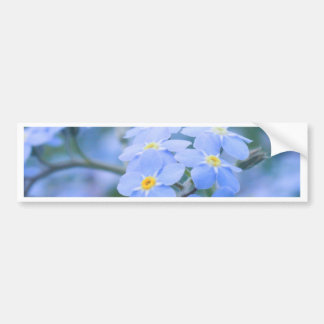 forget-me-not-flowers no. 2 photographed by Tutti Bumper Sticker